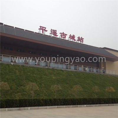 Taxi Service from Pingyaogucheng Station to Pingyao Hotel